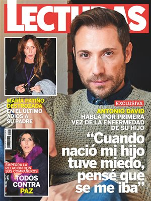 Cover 3382